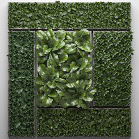 vertical gardening picture model