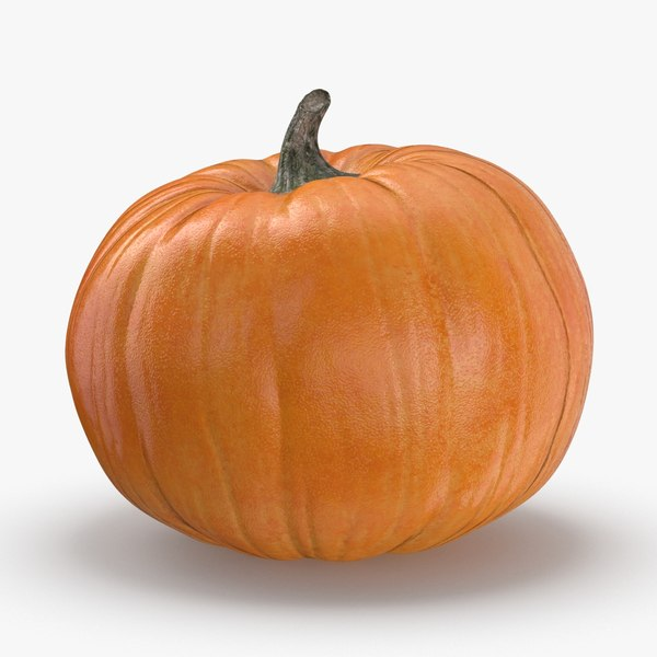 pumpkin-patch---01 3D model