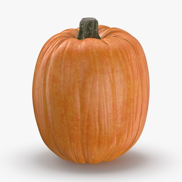 3D model pumpkin-patch---03