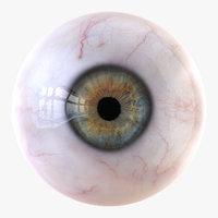 Detailed Human Eye