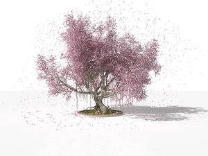 realistic sakura tree model