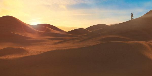 desert dunes soldier 3D model