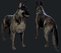 german shepher 3D model