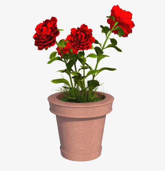 flower pot model