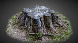 3D model tree trunk