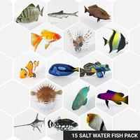 3D 15 saltwater fish model