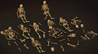 remains skeleton bone big pack 3d model