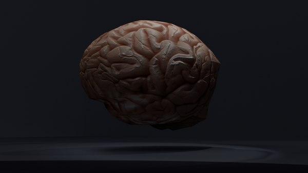 brains 3D