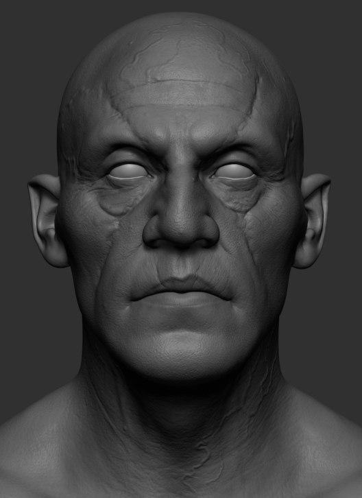 realistic head jaw 3D model