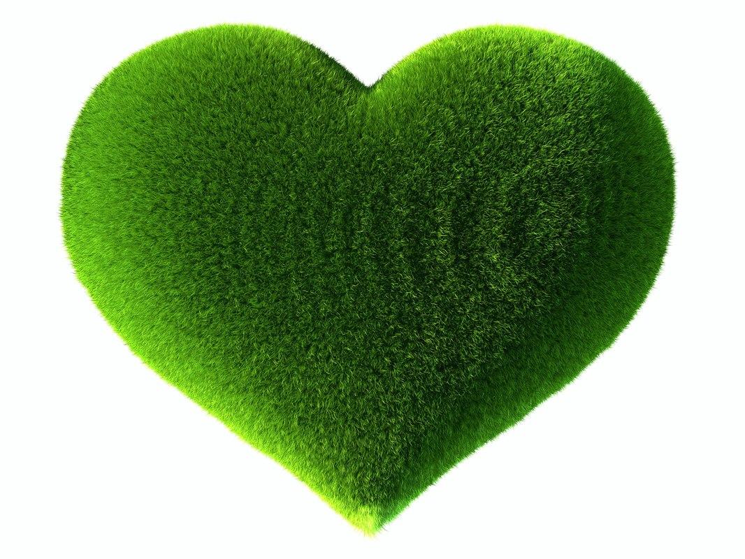 grass heart 3D