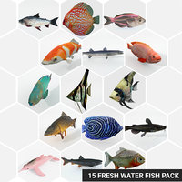3D 15 freshwater fish catfish model