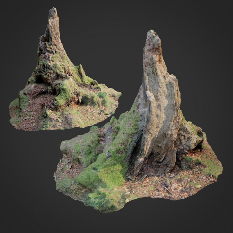 nature stump 10 model