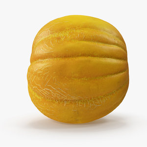 3D melon v-ray model