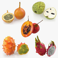 cutted exotic fruits 3D model