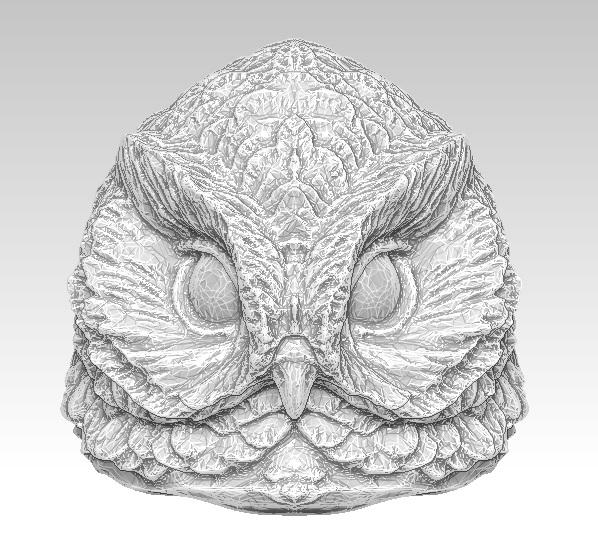3D owl bird head model
