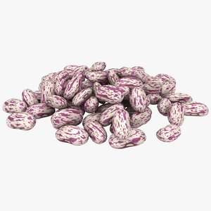 realistic light kidney bean 3D