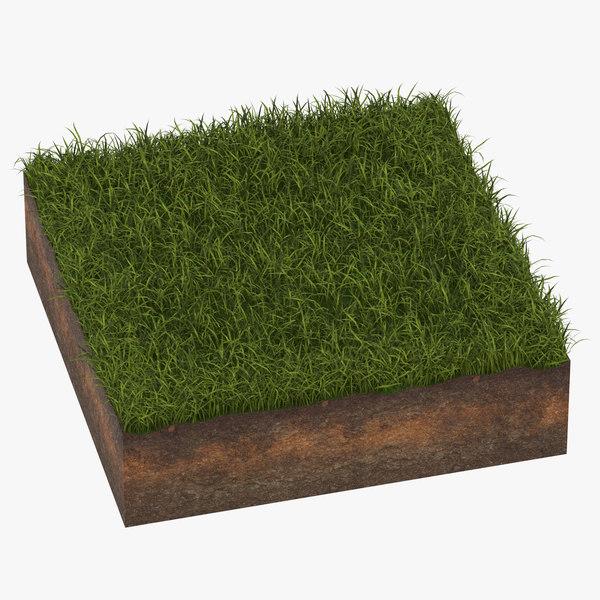grass cross section 04 3D model