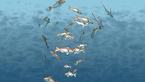 rigged fish school animation 3D model