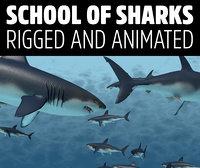 school sharks rigged animation 3D model