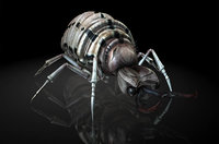 antlion lion ant 3D model