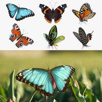 butterflies 2 io 3D model