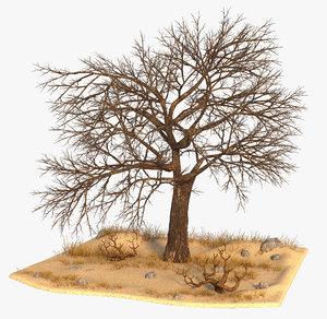 3D tree nature model