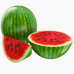 watermelon fruit model