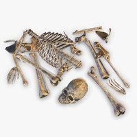 Old Human Bones PBR