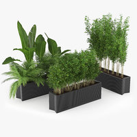 palm flower flowerbed model