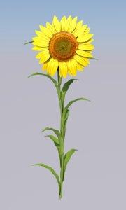 3D model sunflower flower sun