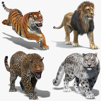 3D model big cats fur