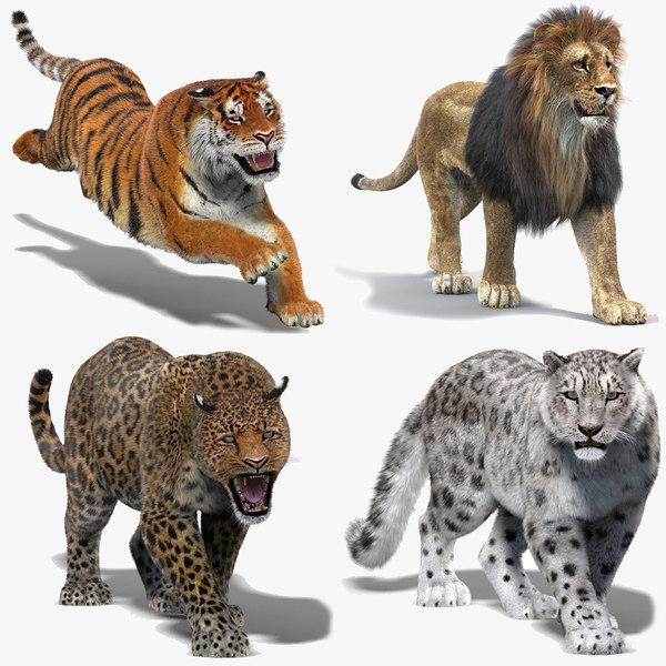 3D model big cats fur