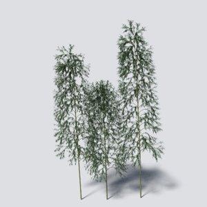 bamboo blender cycles 3D model
