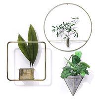 3D model indoor metal frame plant pot