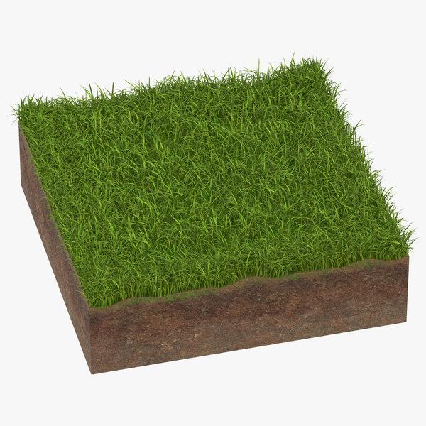grass cross section 02 model