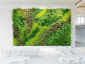 hall background greenwall 3D