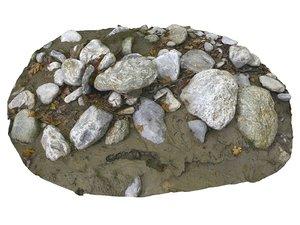 3D forest ground rock 16k model