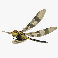dragonfly halloween pennant 3D model