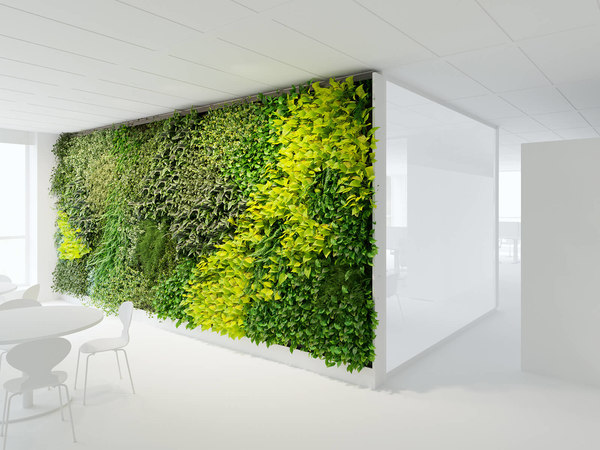 office greenwall b 3D
