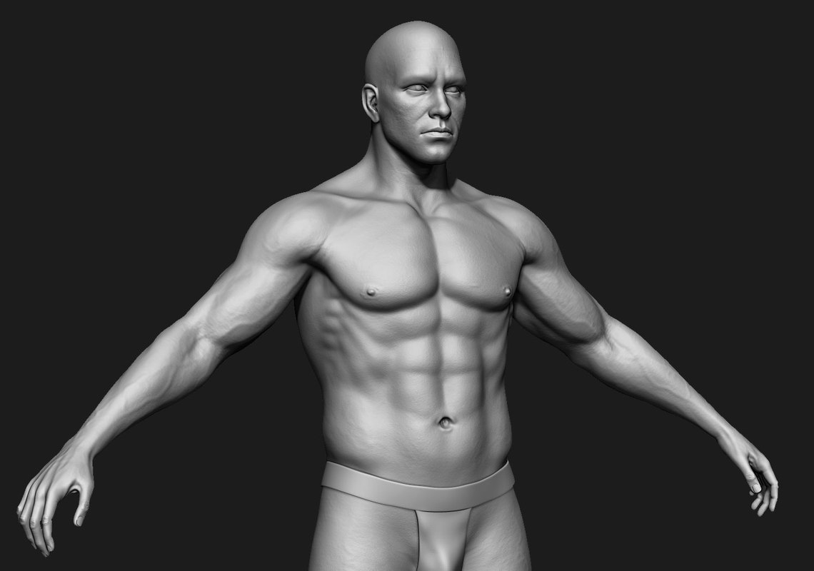 3d Human Male Zbrush Body Model Turbosquid 1329026