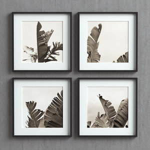 picture frames set images 3D model