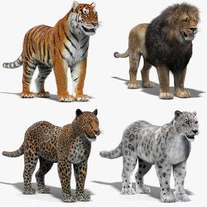big cats fur 3D model