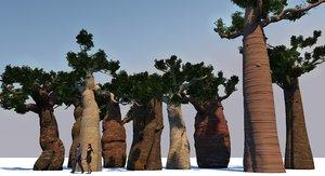 baobabs 3D model