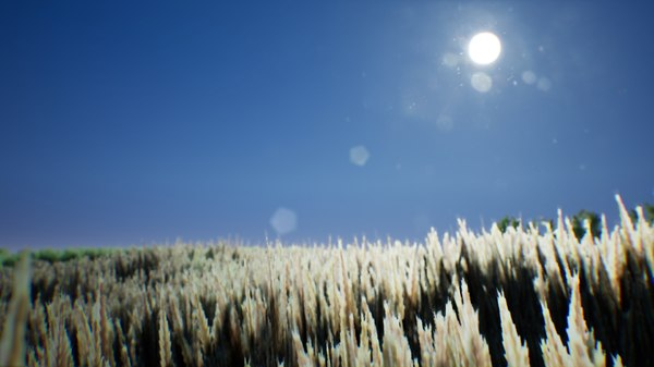 stylized wheat 3D model