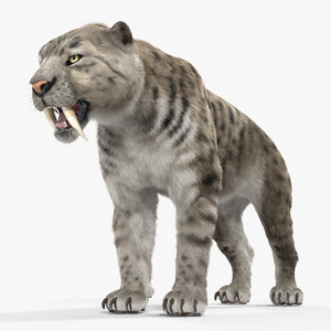 3D arctic saber tooth cat fur model