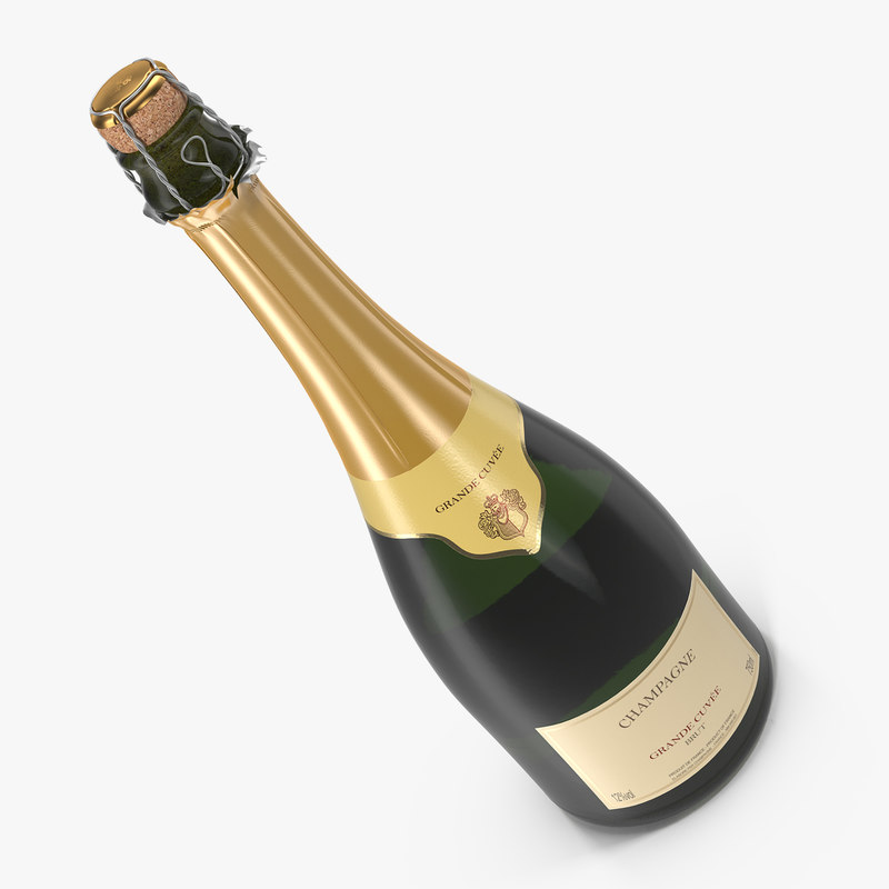 french champagne bottle generic 3D