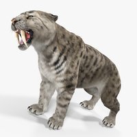 arctic saber tooth cat 3D
