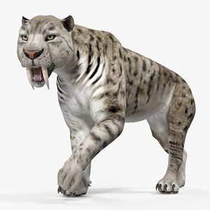 arctic saber tooth cat model