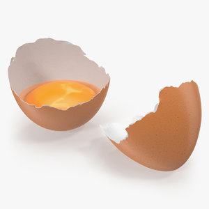 3D cracked egg shell