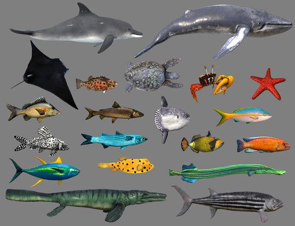 fish 4 games 3D
